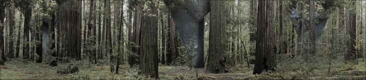 Redwood Single Pole House